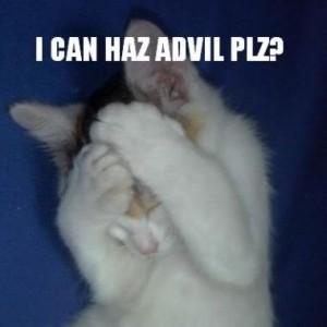 headachecat