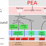 Novel Management of PEA Arrest (Calgary EM Journal Club)